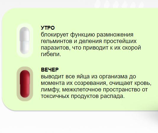 купить санацин в аптеке цена капсулы от паразитов